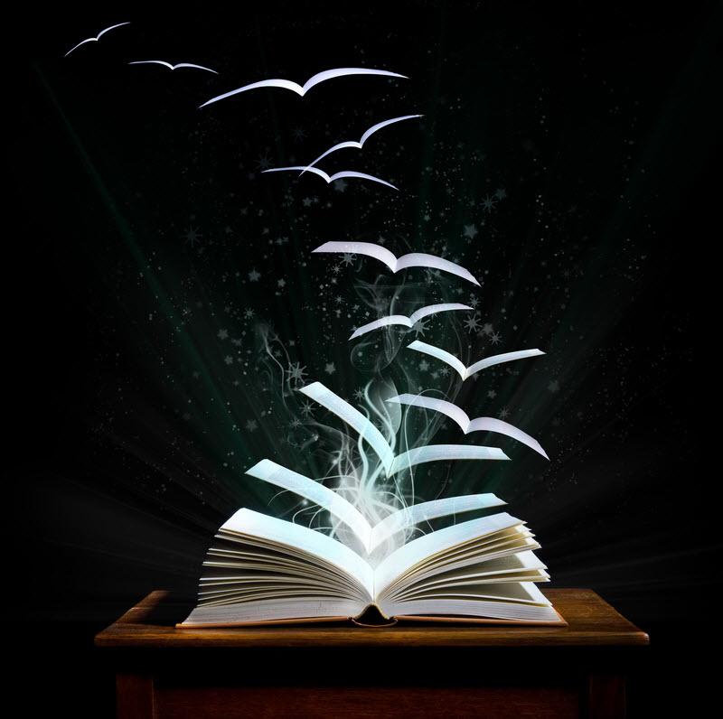 book-indie-pic